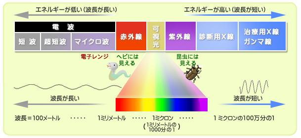 (電磁波の種類:放射線影響研究所資料より).jpg