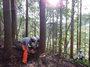 園長先生自らエコラの森で伐採した木を柱に使用